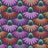 7581 Echinacea Glow